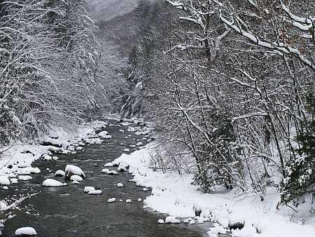 cold-river-small.jpg