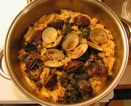 clams-small.jpg