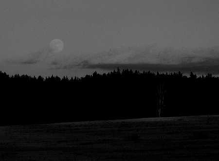 gray-moonrise-small.jpg