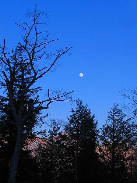 moon1-small.jpg