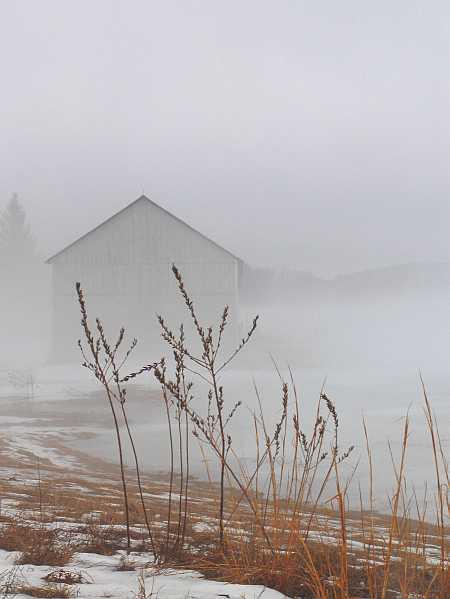 fog6-small.jpg