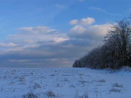 ice-storm2-small.jpg