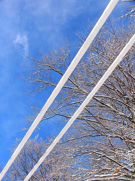 white-wires-small.jpg
