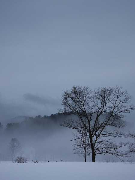 legate-fog-small.jpg