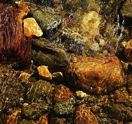 water-3-small.jpg