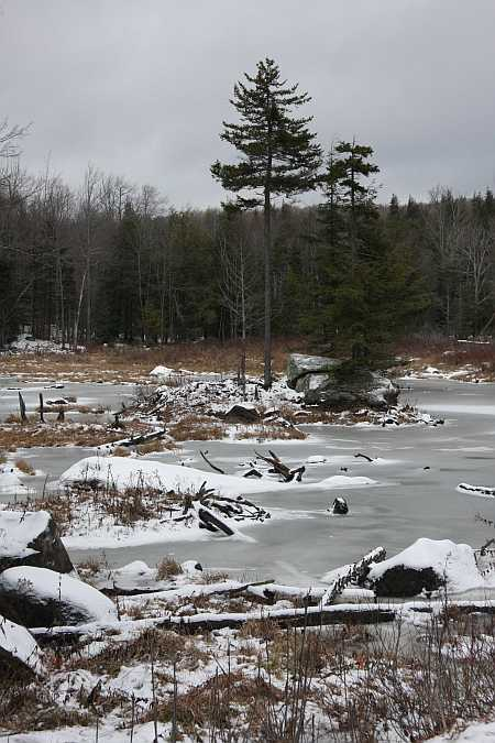 frozen-pond-small1