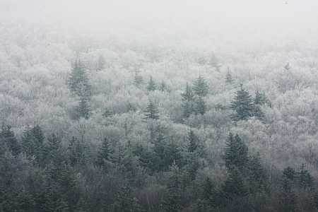 ice-fog-2-small