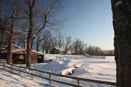 cummington horse farm