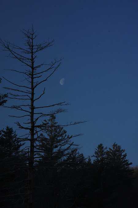 half-moon-smallish