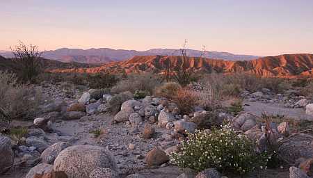 a-b desert scape