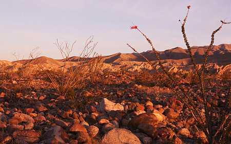 a-b stony ground