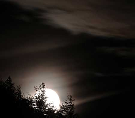 moon#69