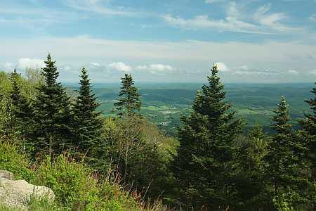 NA view