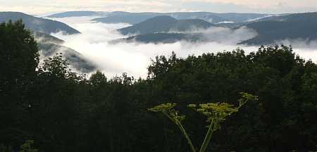 river fog sunrise